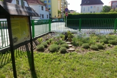 ZŠ-TGM-koutek-prirodni-zahrady-I