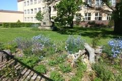 Zµ-TGM-ve-µttí-koutek-p²írodní-zahrady-II